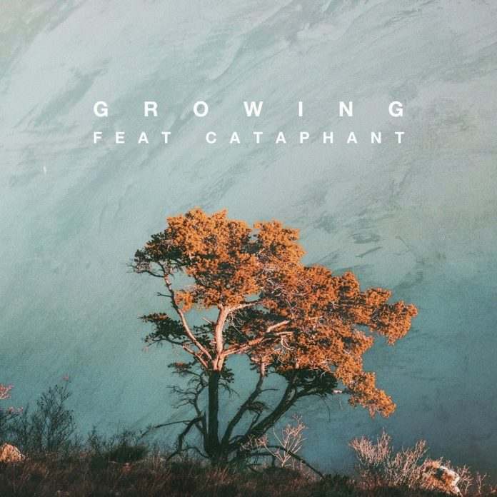 Growing single by Sareem Poems and Terem